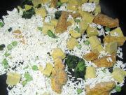 Indisches Curry mit Hühnchen gefroren
