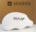 Max Pro BFF Brush